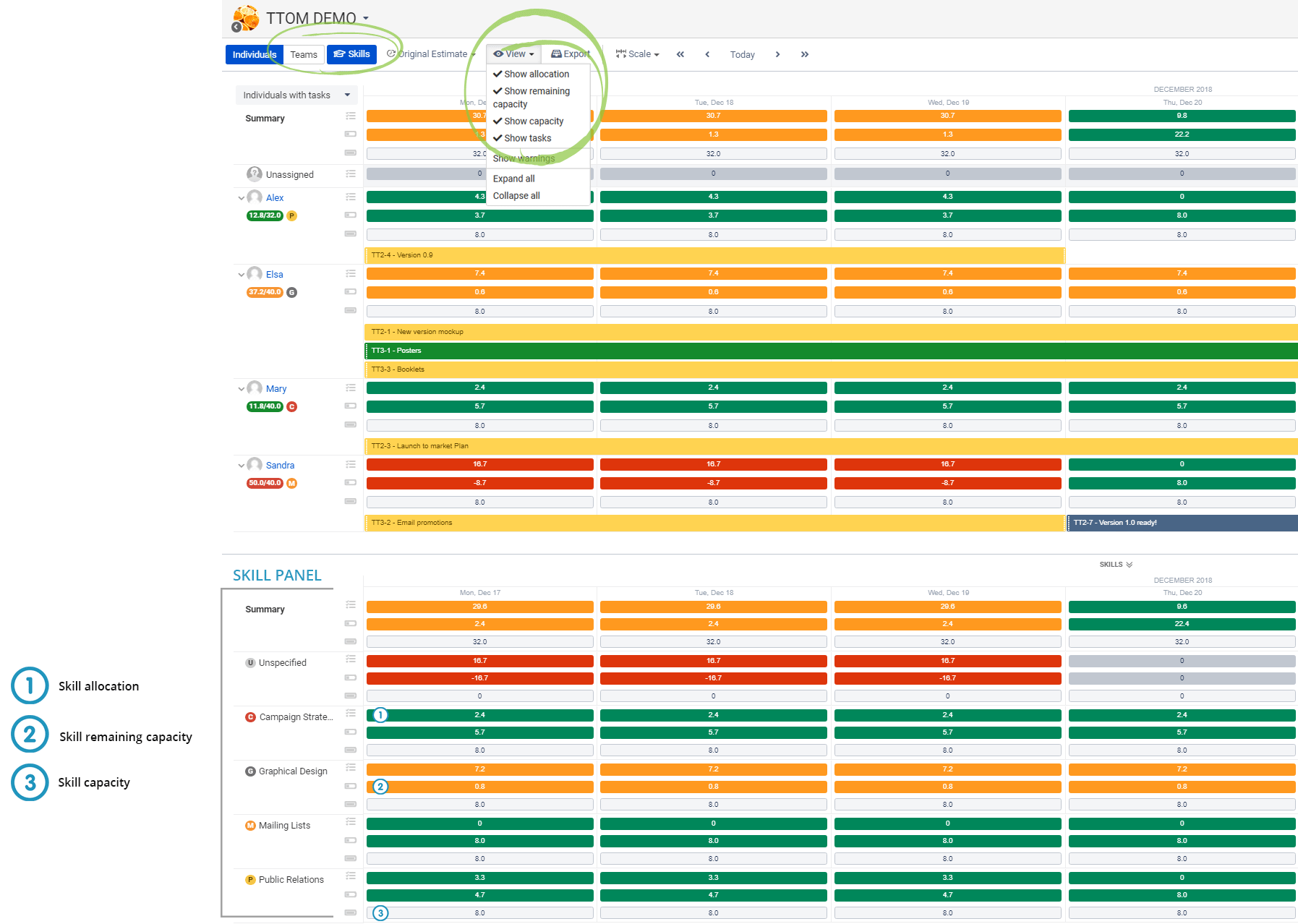 Resources in Jira BigPicture. Capacity, skill panel